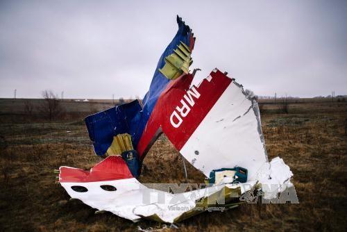 Nhóm điều tra quốc tế: Tên lửa Nga bắn rơi máy bay MH17 - Ảnh 2